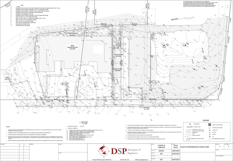 DSP topographical survey